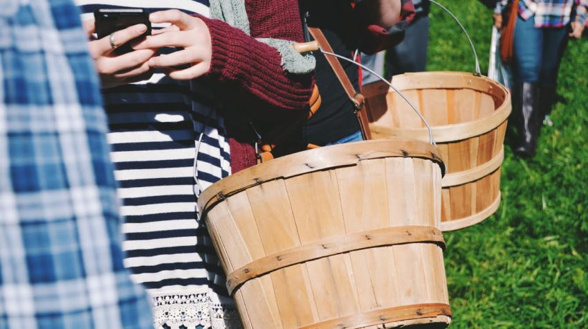 How Your Family Can Survive (and Thrive) in the Text Generation