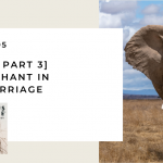 195. [Best of Part 3] The Elephant in Your Marriage